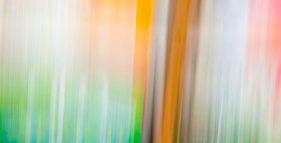 Robert Schumanns Fantasie für Violine und Orchester